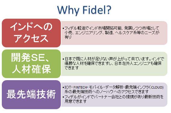 why Fidel