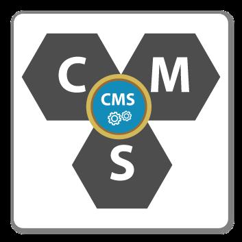 CMSアプリケーションと保守、東京、日本